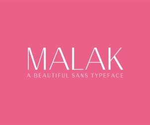 Free Sans Serif Font
