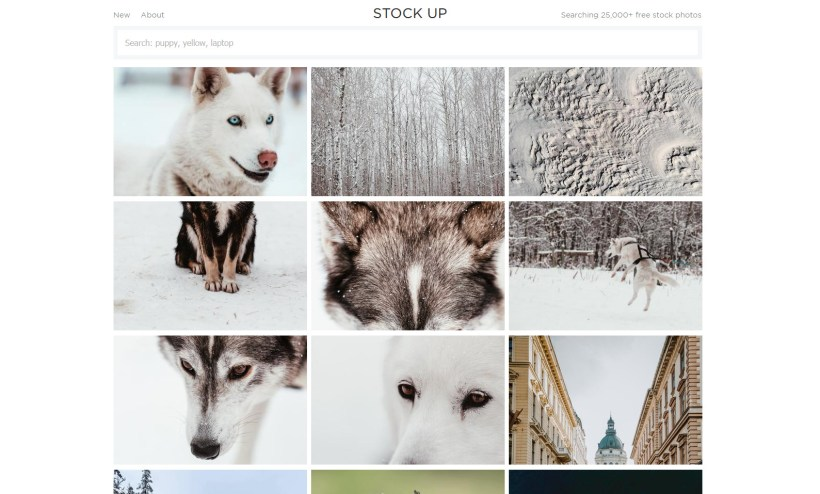 download free stock photos & images