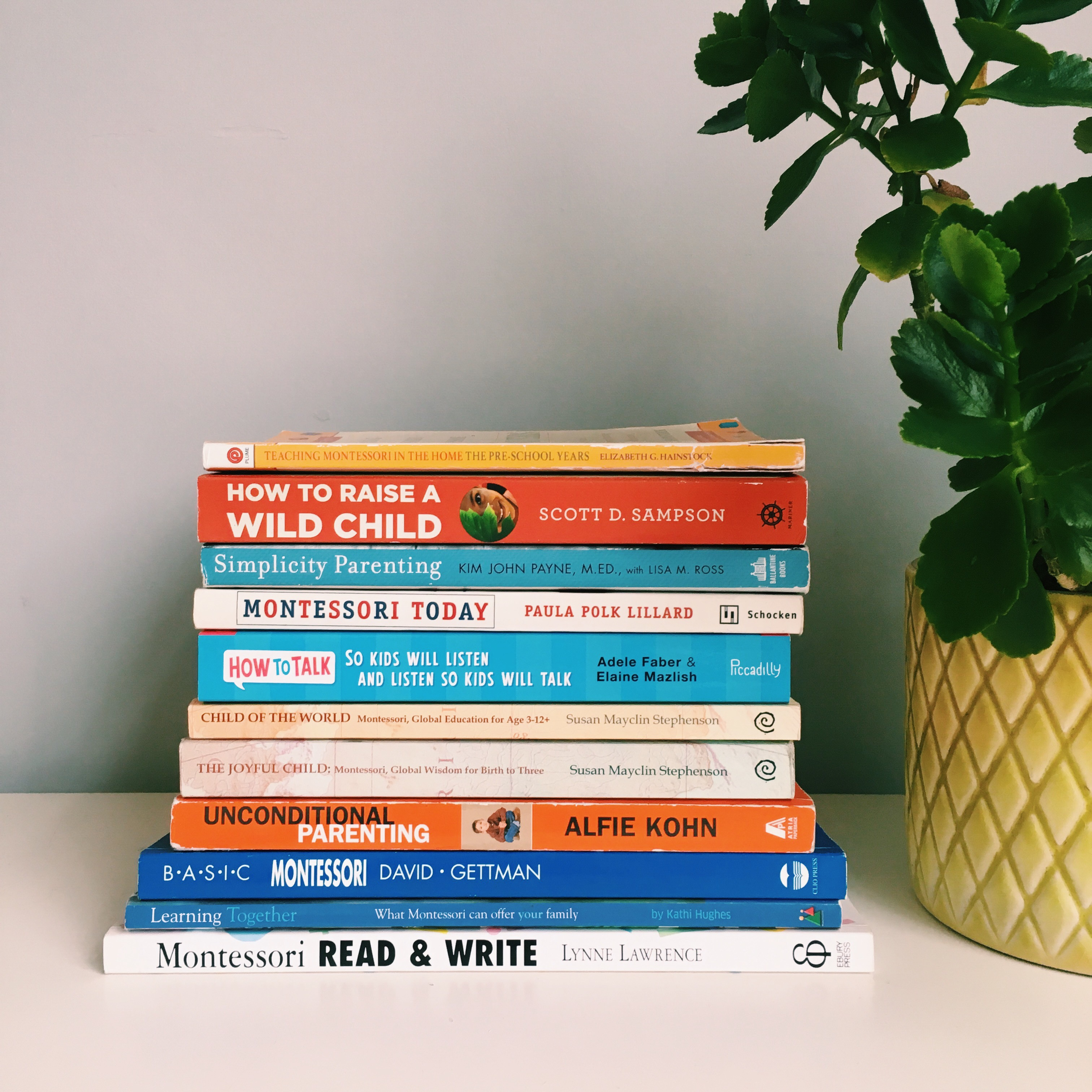 Global Education for Age 3-12+ Montessori Child of the World