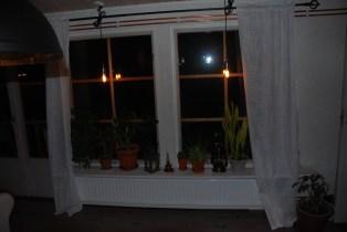 Fönstren