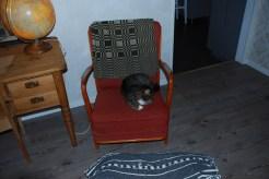 Lilith gillar också stolen
