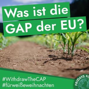 Read more about the article Türchen 3: Was ist die GAP und was sollte sich an ihr ändern?