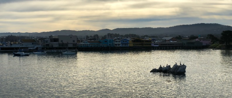 Anamorphic photo of Monterey harbor at high tide in the late morning