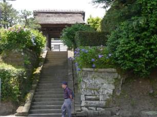 kitakamakura in June