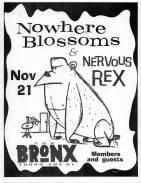 The Bronx (1991)
