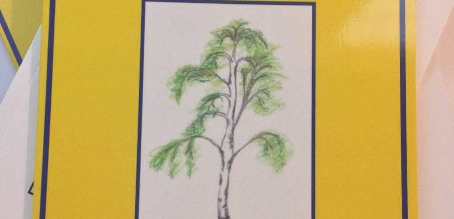 Mariechen und das Geheimnis vom Maibaum