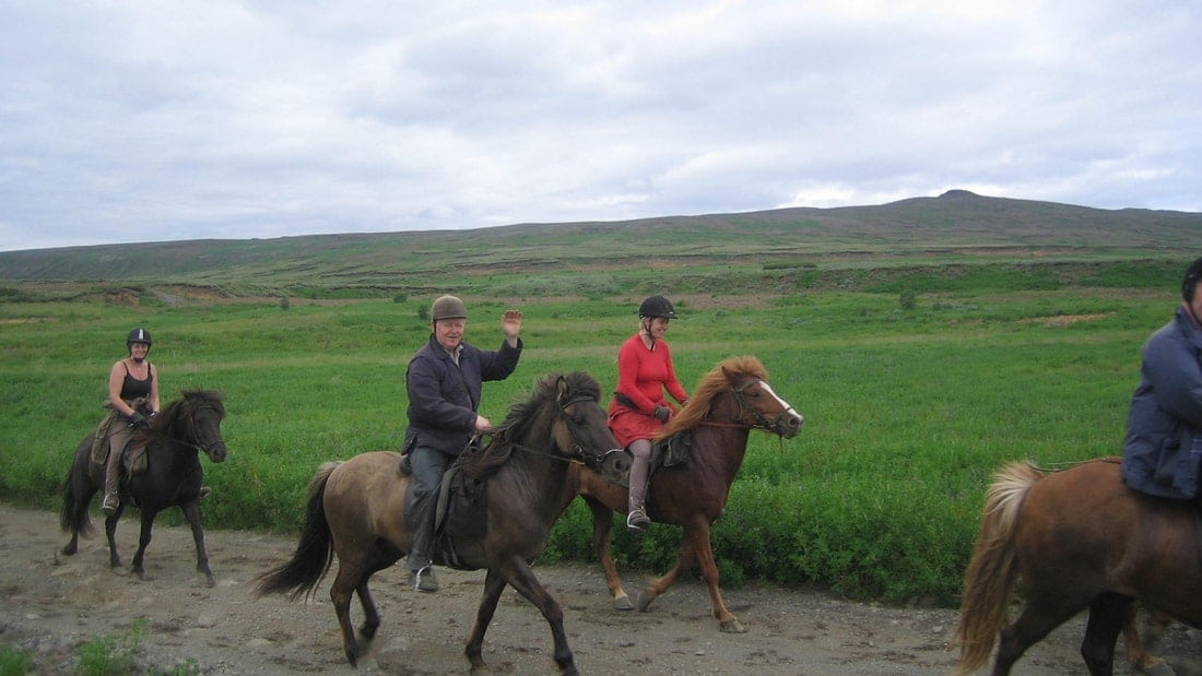 1 Hour horse riding tour friend in iceland