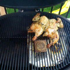 BBQ Chicken Food