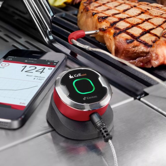 iGrill BBQ Thermometer Cobourg