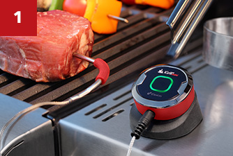 iGrill BBQ Thermometer Kingston