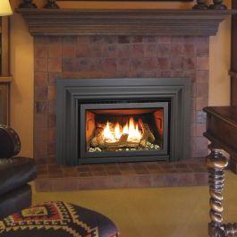 Gas Fireplace Insert Propane Fireplace Insert Regency ...