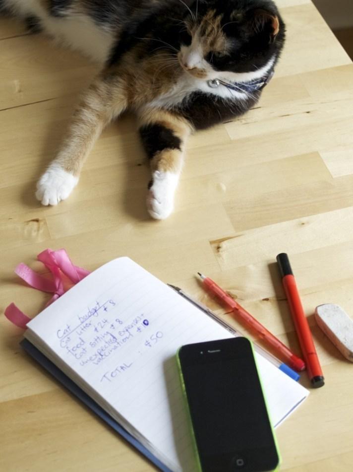 5 steps to basic budget