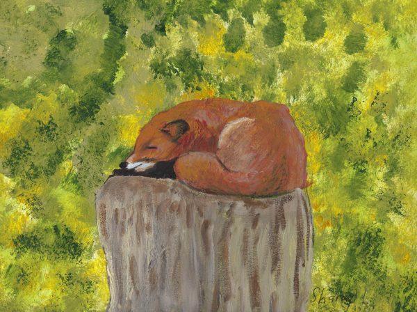 ShL sleeping fox 9×12 acrylic 9-18 $45