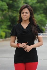 Nisha-Aggarwal (4)