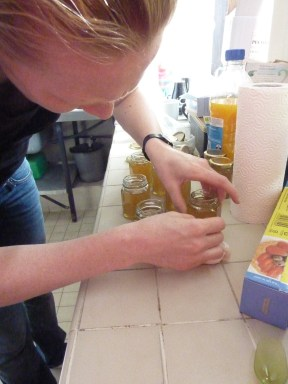 Honey Harvest August 2012