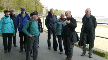 Genteel East Wight walk with John Brownscombe