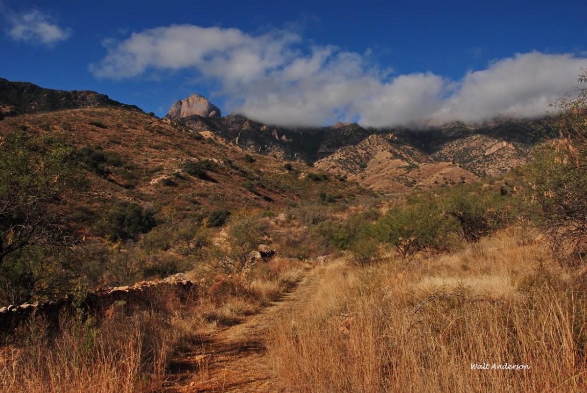Brown Canyon & Baboquivari, AZ