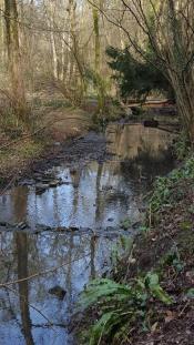 Brislington Brook.