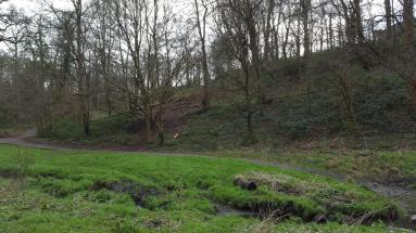Looking across the Brislington Brook towards the new forest school area created by APE Project.