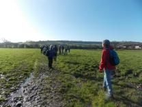 Walk To The Source - 30/01/2016. - The fields between Whitchurch and Dundry.