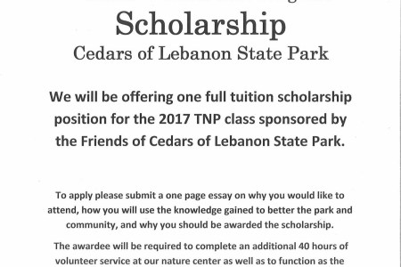 College scholarships that do not require essays lettercard co