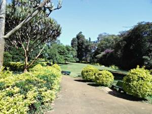 Nairobi's uban gem—City Park © cngarachu
