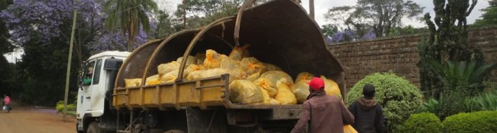 Bags of garbage collected