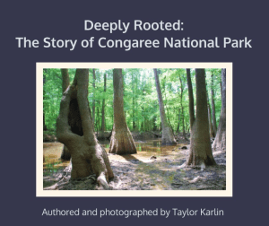 Deeply Rooted book cover