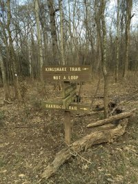 Kingsnake Trailhead Junction