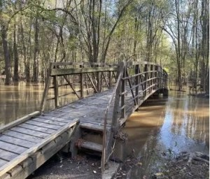 Bridge L over Cedar Creek