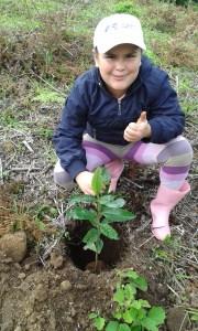 zzzTree planting