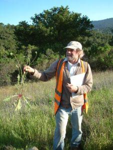 Ken Himes with hawksbeard weed