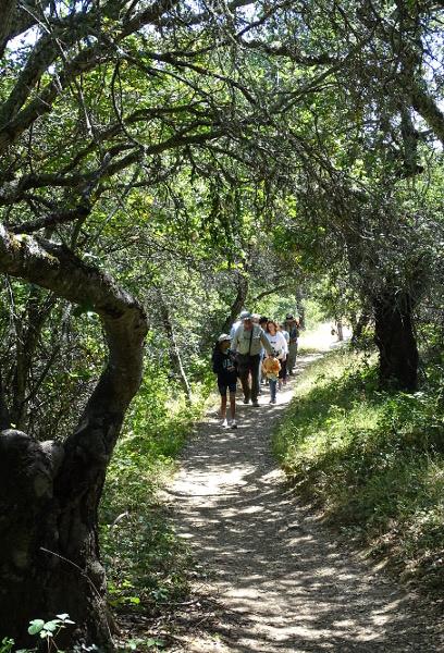 Docent-led hike