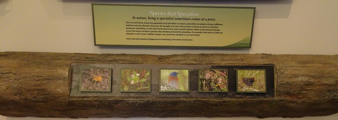 Species that specialize exhibit