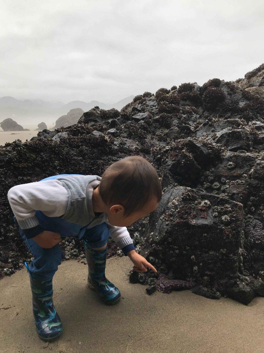 Ann-Wen-Yang-Lin-Little-Explorer-scaled