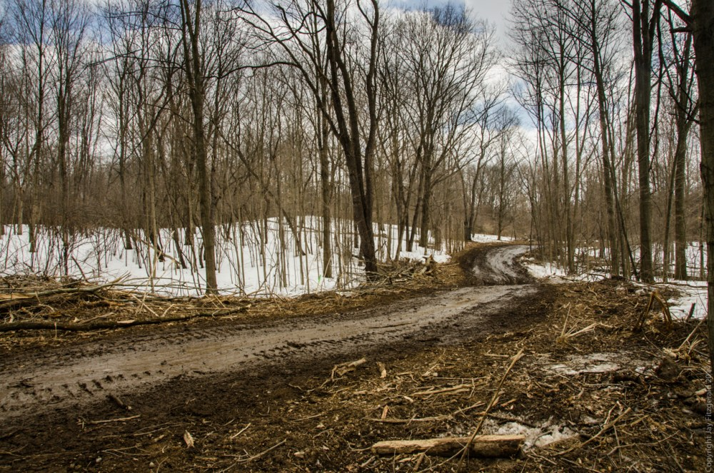 New Cedar Creek Trail at Highland State Recreation Area is Nearing Completion (5/6)