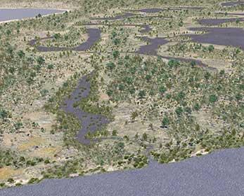 Perths-wetlands-1827-image-courtesy-of-Dimitri-Fotev-City-of-Perth