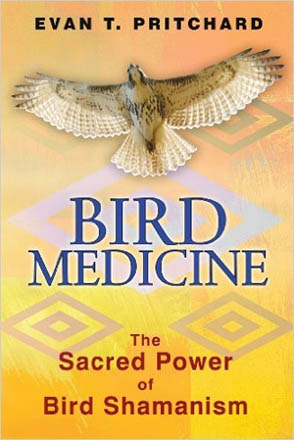 Book cover for Bird Medicine by Evan T. Pritchard