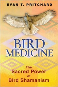 Image of book cover for Bird Medicine by Evan T. Pritchard