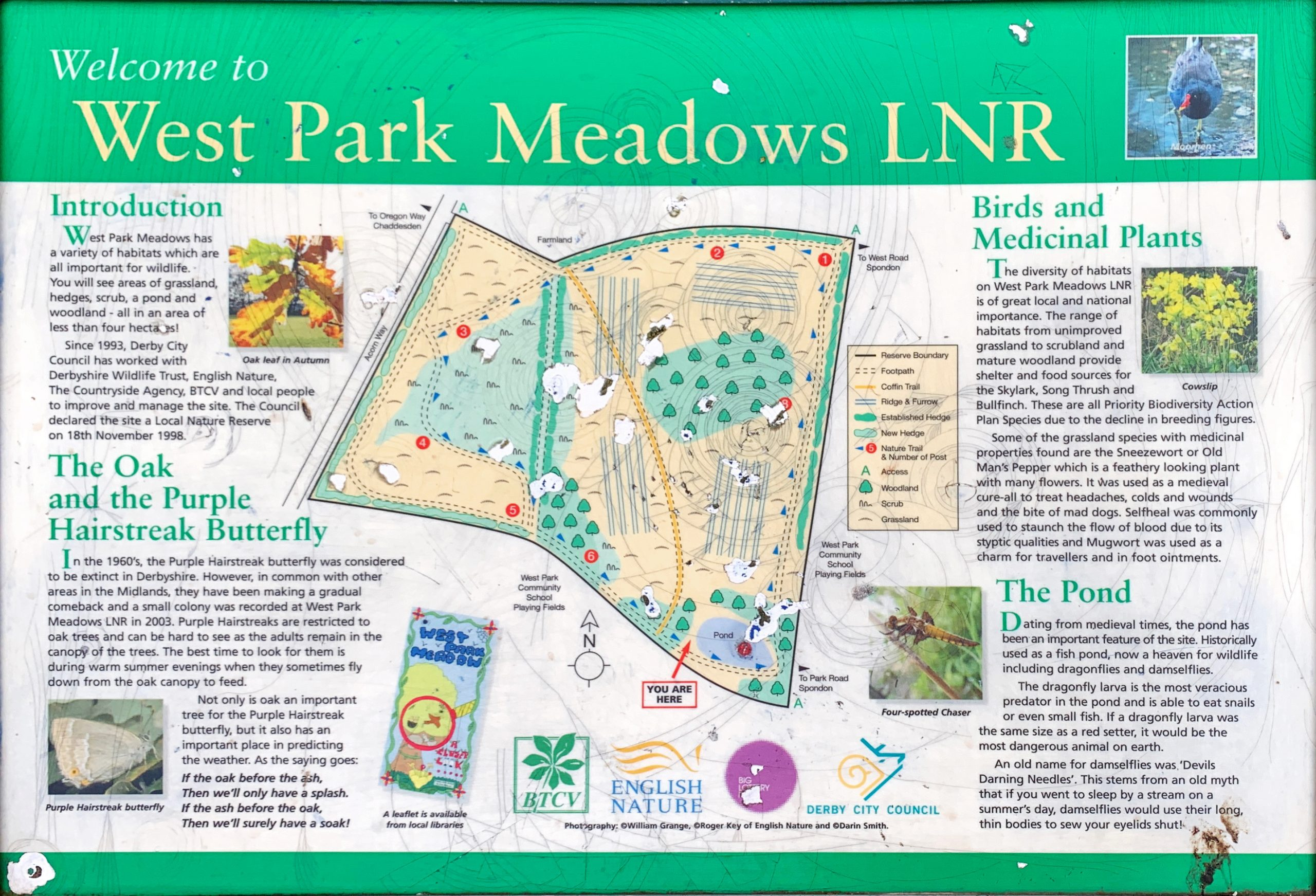 West Park Meadows