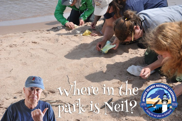 Where in the park is Neil?