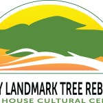 Peavy Landmark Tree Rebirth Art Auction Set for Art Mart