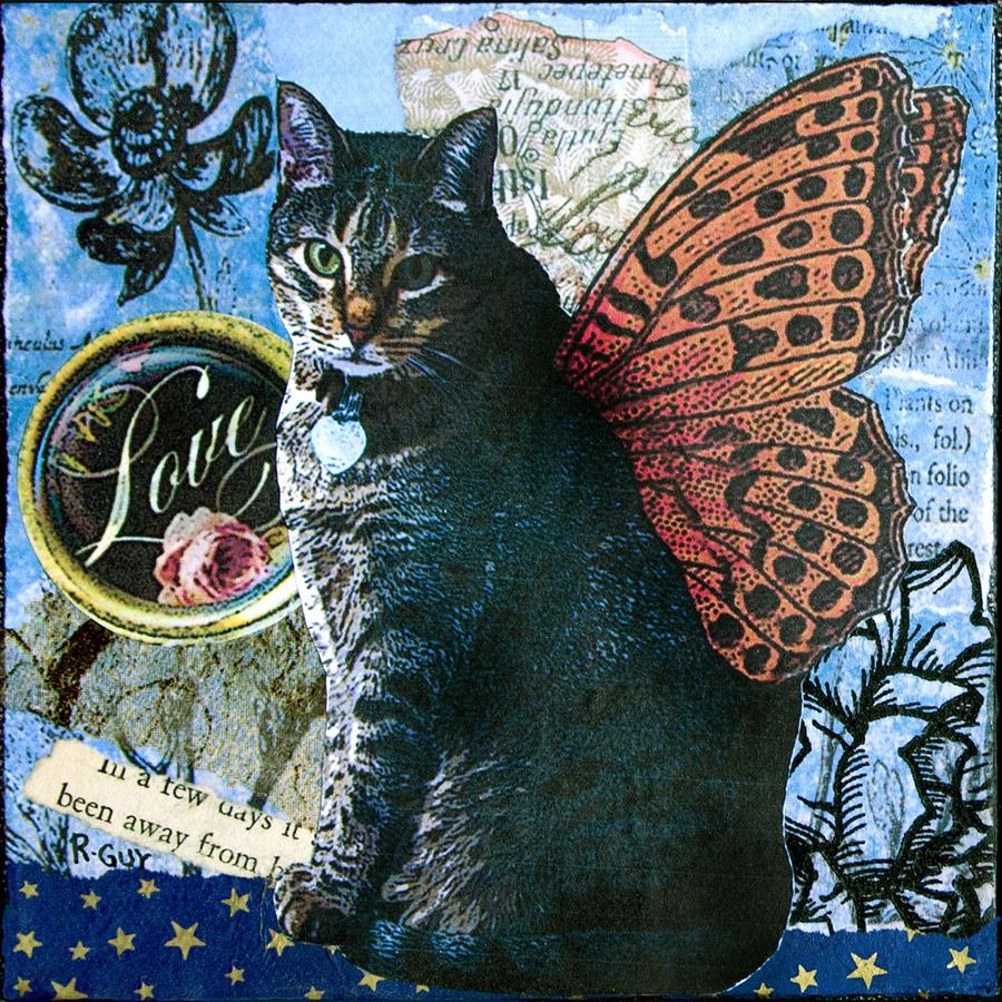 dydream-Butterfly-Kitty-clancy
