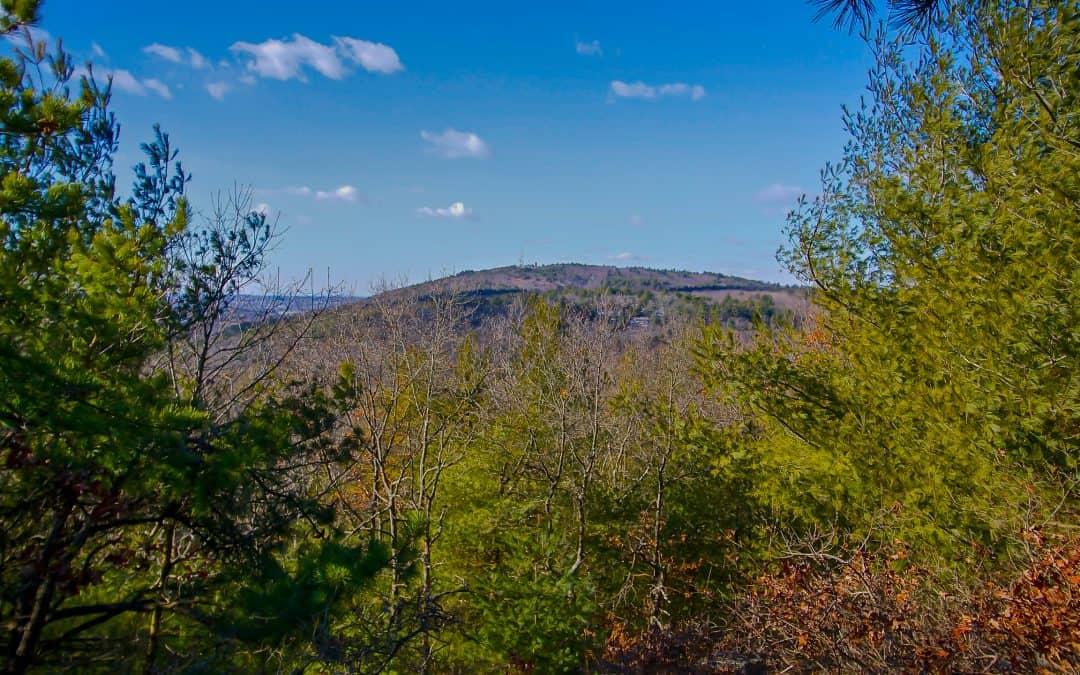 Help Protect Skyline Trail Hikers