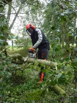Clearing fallen trees on Fallowfield Loop