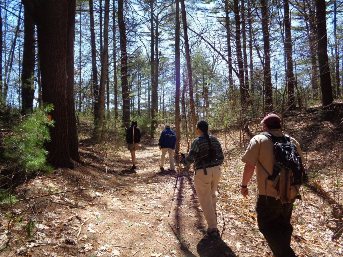Hiking in Upton State Forest