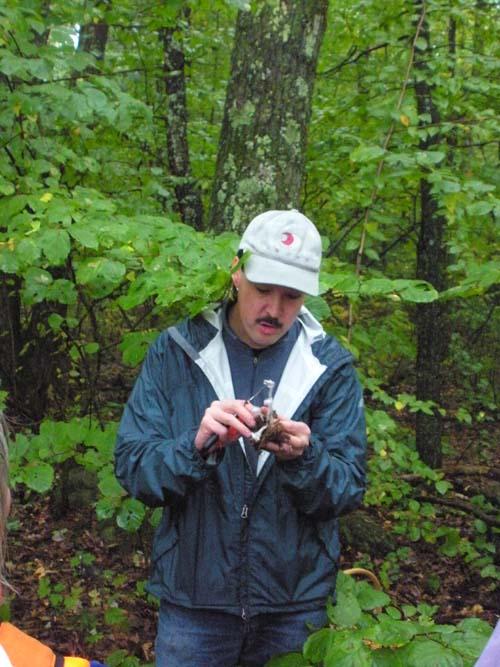 Upton State Forest Mushroom Walk