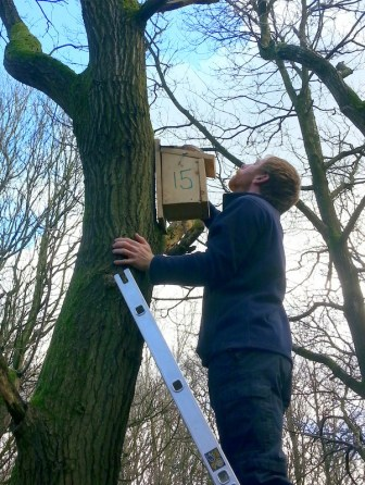 Installing Nest Box