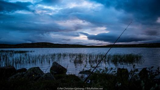 Fiske ved Bleiketjønna