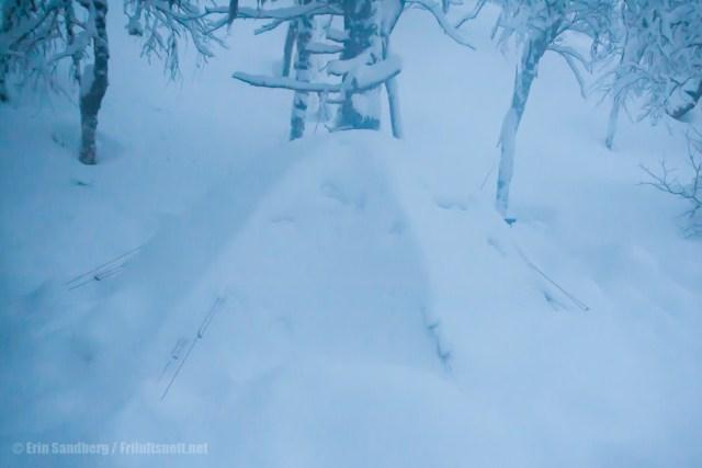 Kuppeltelt dekket av snø